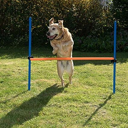 Fun & Sport Komplettes Agility Trainings Set für Hunde, inkl