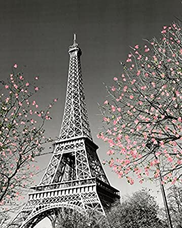 Paris Eiffel Tower Blossoms Decorative Photography Travel City Poster Print, Unframed 16x20