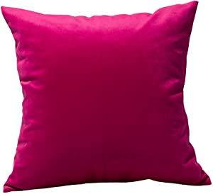 TangDepot Solid Velvet Throw Pillow Cover/Euro Sham/Cushion Sham, Super Luxury Soft Pillow Cases, Many Color & Size Options - (16