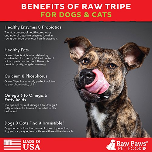 Raw Food For Dogs Home Delivery