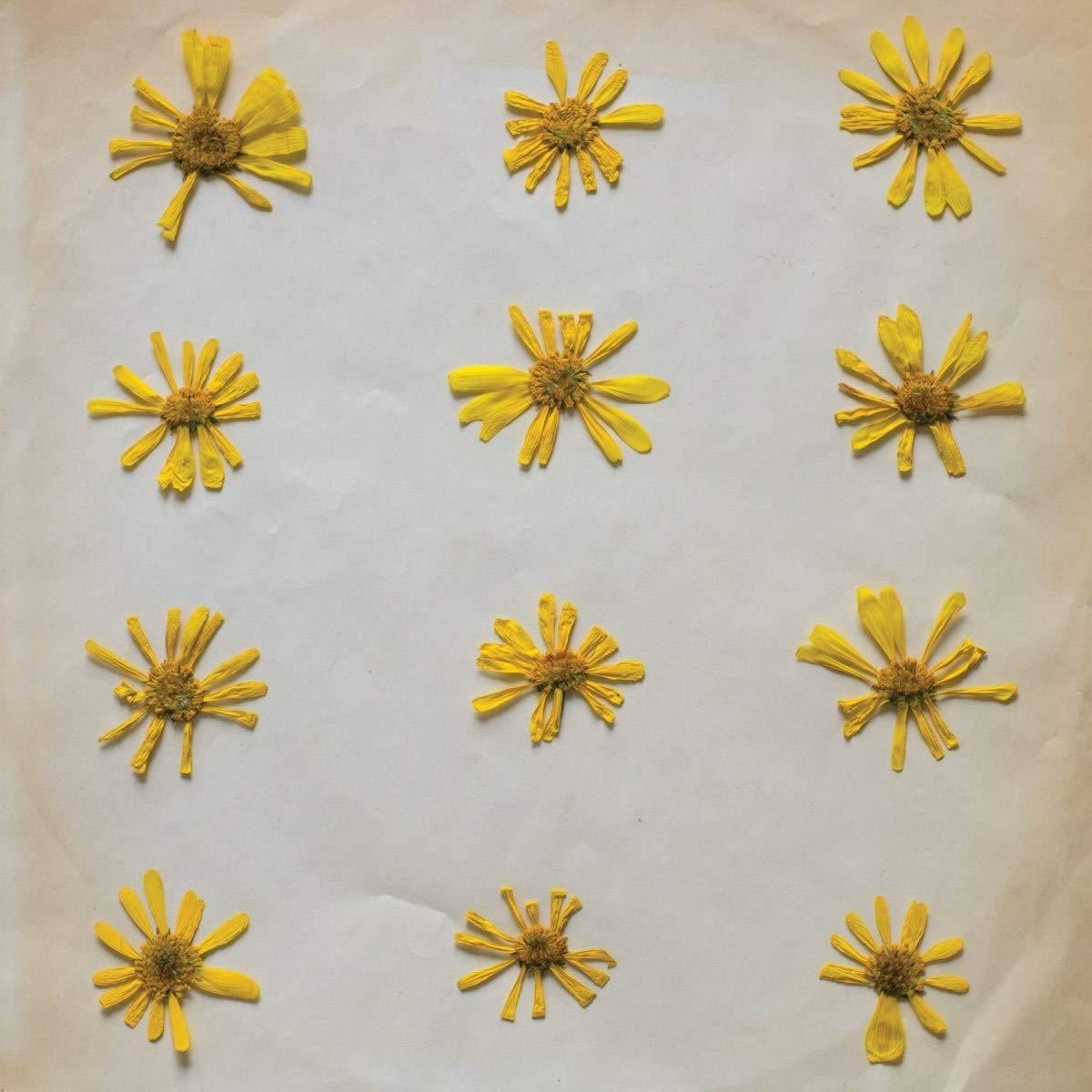 Vinilo : Molochs - Flowers In The Spring (Digital Download Card)