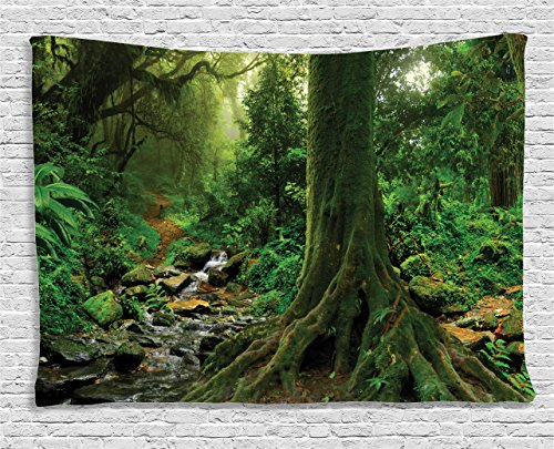 Rain Wall Hanging - Ambesonne Forest Tapestry, Rain Forest Scenery with River in The North Forest in The Early Morning Humid Fog Print, Wide Wall Hanging for Bedroom Living Room Dorm, 80