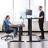Nemore Adjustable Height Standing Desk Adjustable Table with Crank Handle Ergonomic Desk Great for Home & Office