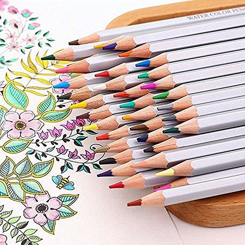 Colored Drawing Pencils For Artist Sketch Adult Secret Garden Coloring Book Kids Writing Manga Artwork 36 Color