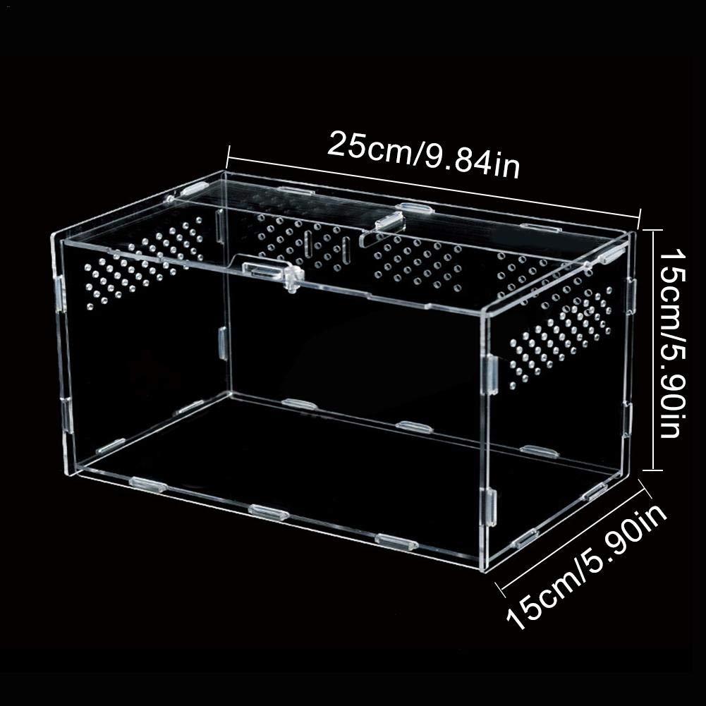 windyday Versatile Terrarium for Amphibian Reptiles Accessories for Lizard Turtle Snake Geckos Transparent Transport Box 25 x 15 x 15 cm