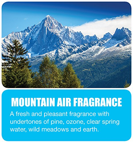 Big D 463 Concentrated Room Deodorant for Metered Aerosol Dispensers, Mountain Air Fragrance, 7 oz (Pack of 12) - Air freshener ideal for restrooms, offices, schools, restaurants, hotels, stores by Big D (Image #1)