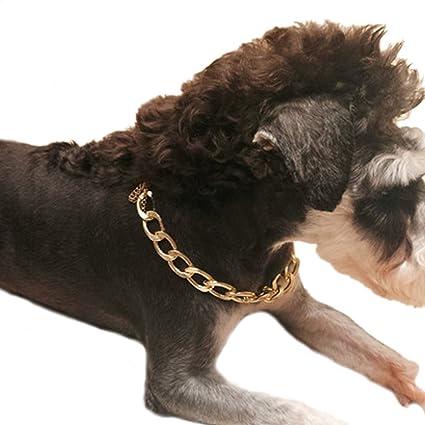 Collar De Perro, Legendog Collar De Perro Cadena De AleacióN Fresco Collar De Cadena De