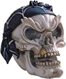 StealStreet Pirate Skull Head with Spider Hat Collectible Figurine Statue Decor
