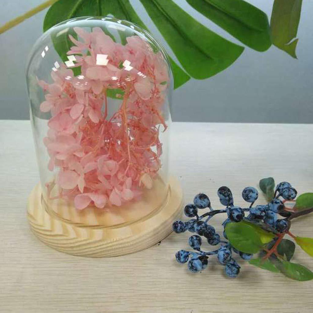 KESOTO Florero de Cristal Cúpula con Base Madera, Botella con Flor Seca Ornamento de Mesa: Amazon.es: Hogar