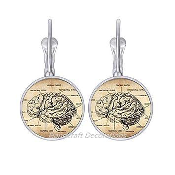 Amazon.com: Pendientes de cerebro anatómico de ...
