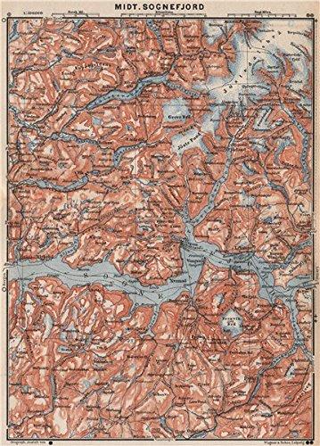 Amazoncom CENTRAL SOGNEFJORD Topomap Leikanger Sogndal Norway - Norway map amazon
