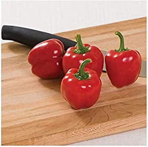 David's Garden Seeds Pepper Specialty Sweet Cupid 7743 (Red) 25 Non-GMO, Hybrid Seeds