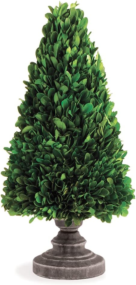 Napa Home & Garden 14-inch Preserved Boxwood Cone Topiary on Stand