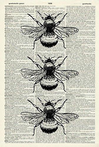 (Bumble Bees Art Print - Wildlife Art Print - Nature Art Print - Vintage Art - Bumble Bee Illustration - Vintage Dictionary Art Print - Book Page Print 594D)