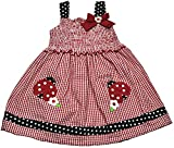 Samara Baby Girls Ladybug Gingham Dress 12 Months Red multi