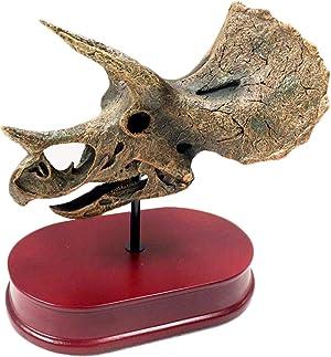 LUCKFY Triceratops Skull Model - Jurassic Dinosaurs Skeleton Desktop Decoration - Remains Replica Skull Resin Model for Archaeological Animal Resear Or Home Decor,Handmade