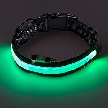 Collar de perro Intermitente Zoto 2, batería CR2032, seguridad ...