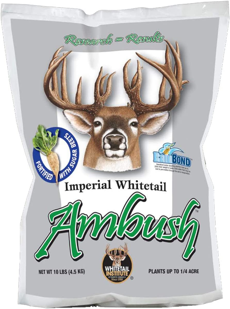 Whitetail Institute Ambush Deer Food Plot Seed, Annual Forage Seed Blend Fortified with Sugar Beets for Excellent Early and Late Season Deer Attraction, 10 lbs (.25 Acre)