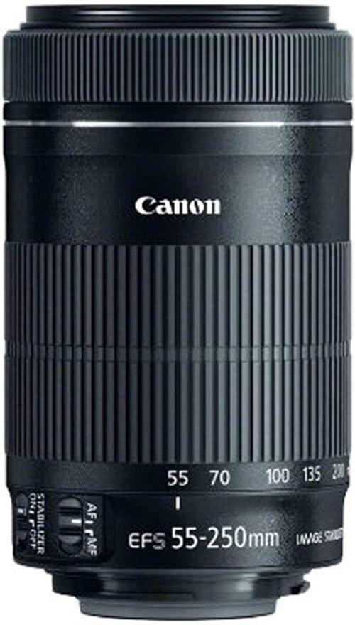 Canon Ef S 55 250mm F4 5 6 Is Stm Objektiv Für Kamera