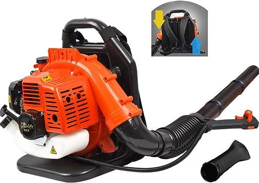 C-TK Soplador de Gasolina con soplador de Hojas, Motor de Dos Tiempos enfriado por Aire con Mochila Acolchada con Capacidad para 1.25 KW: Amazon.es: Hogar