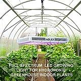LED Grow Light, Plant Grow Lamp, Double Chips Full
