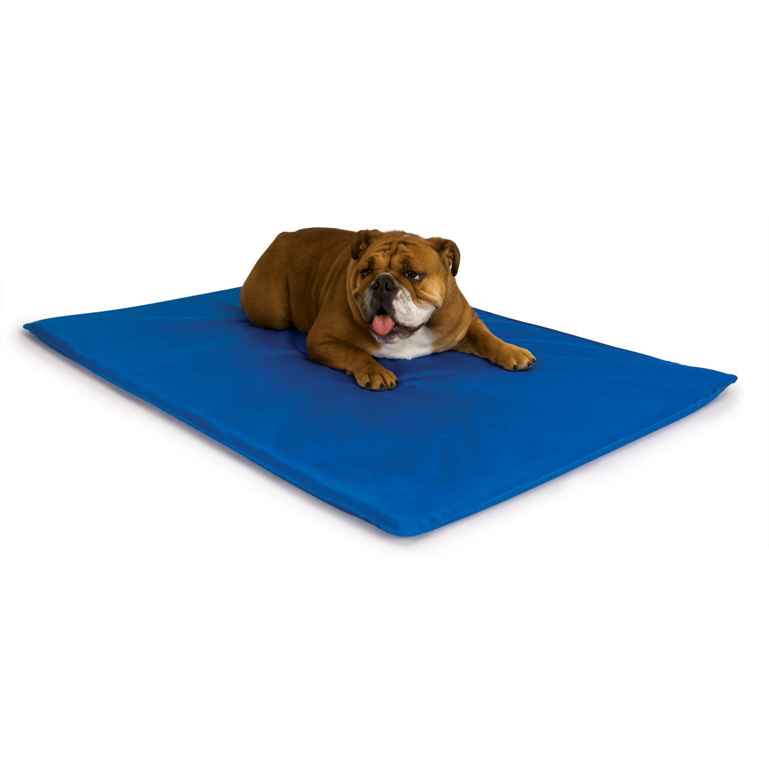 Medium 22-Inch by 32-Inch K&H Manufacturing Cool Bed III Cooling Dog Bed, Medium, 22-Inch by 32-Inch, bluee