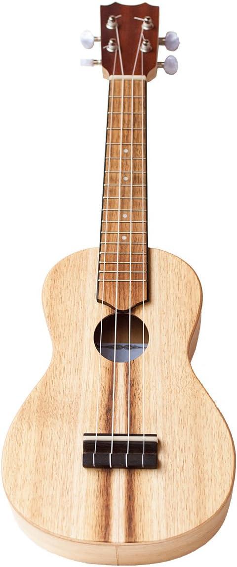 Voggenreiter 0466-5 Volt Guitar Su-1000 Multi-Color