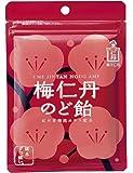 梅仁丹 のど飴60g(約17粒)×5袋