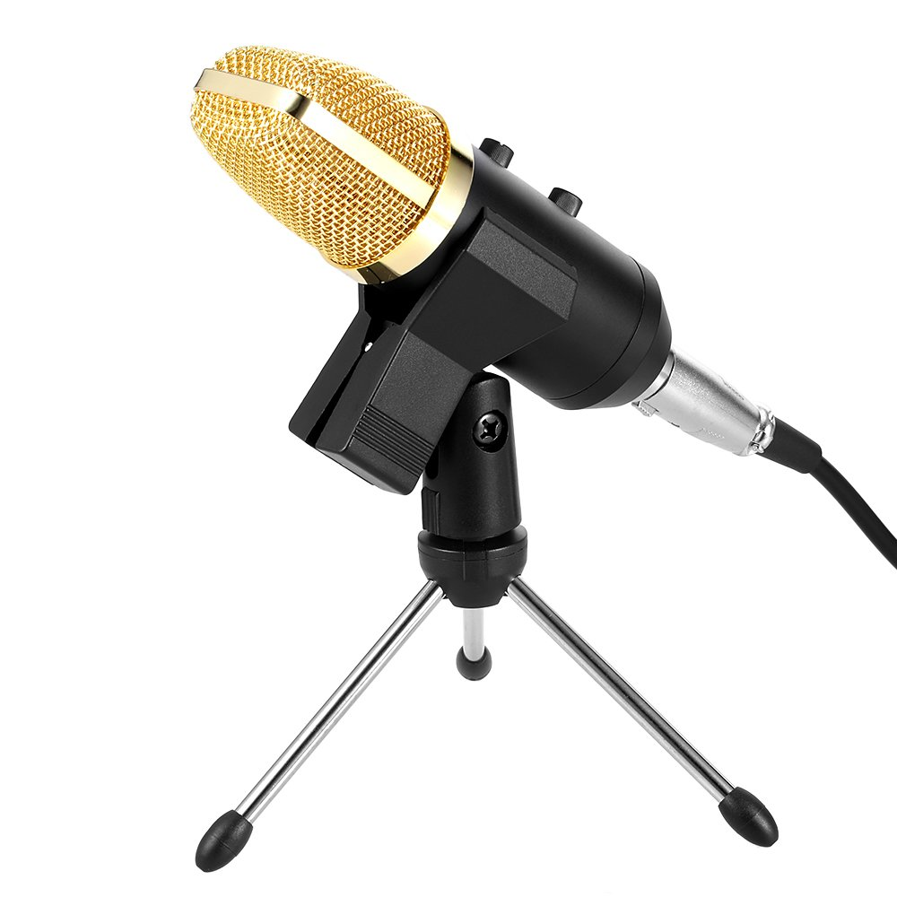Docooler Professional Condenser Microphone Studio Sound Recording Broadcasting with Reverberation Echo Function with Anti-wind Sponge Cover Clip Stand