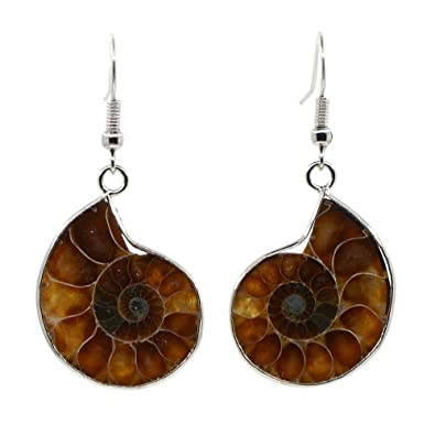 Natural Ammonite Fossil with S925 Sterling Silver Hook Charm Earrings v9BjavpK