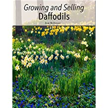 Growing and Selling Daffodils