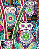 """Reading Log: Gifts for Book Lovers / Reading Journal [ Softback * Large (8"""" x 10"""") * Carnival Owls & Books * 100 Spacious Record Pages & More... ] (Reading Logs & Journals)"""