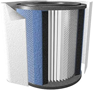 product image for Austin Air Healthmate Jr Black Replacement Filter w/ Prefilter