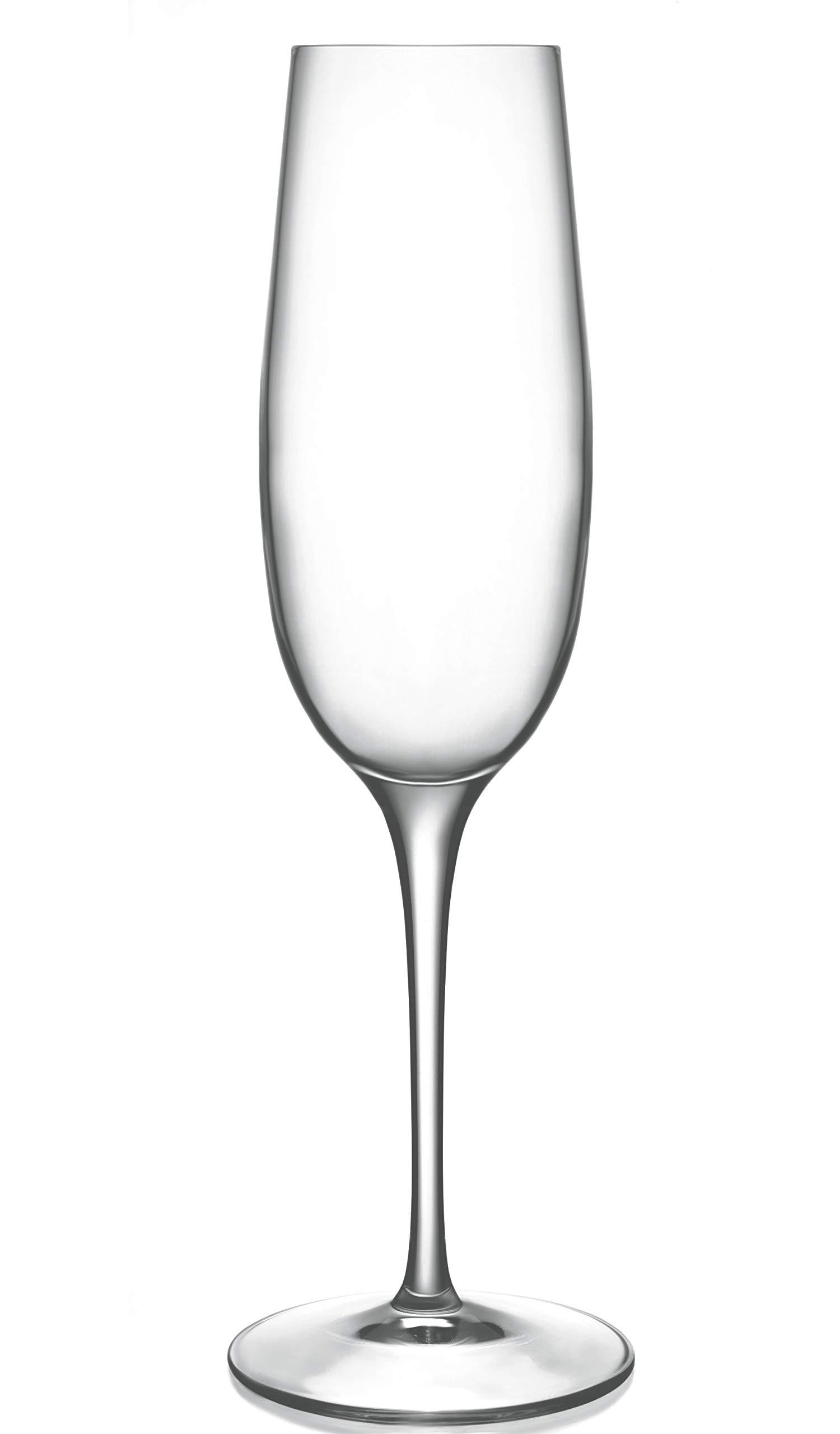 Luigi Bormioli 09233/06 Palace 8 oz Flute Sparkling Wine Glass (Set of 6), Clear
