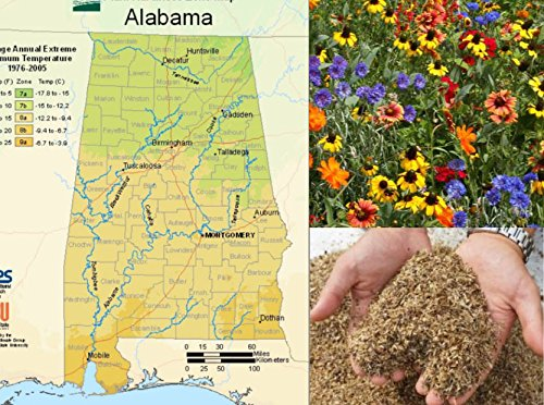 Alabama Wildflower Seed Mix, 1 Ounce