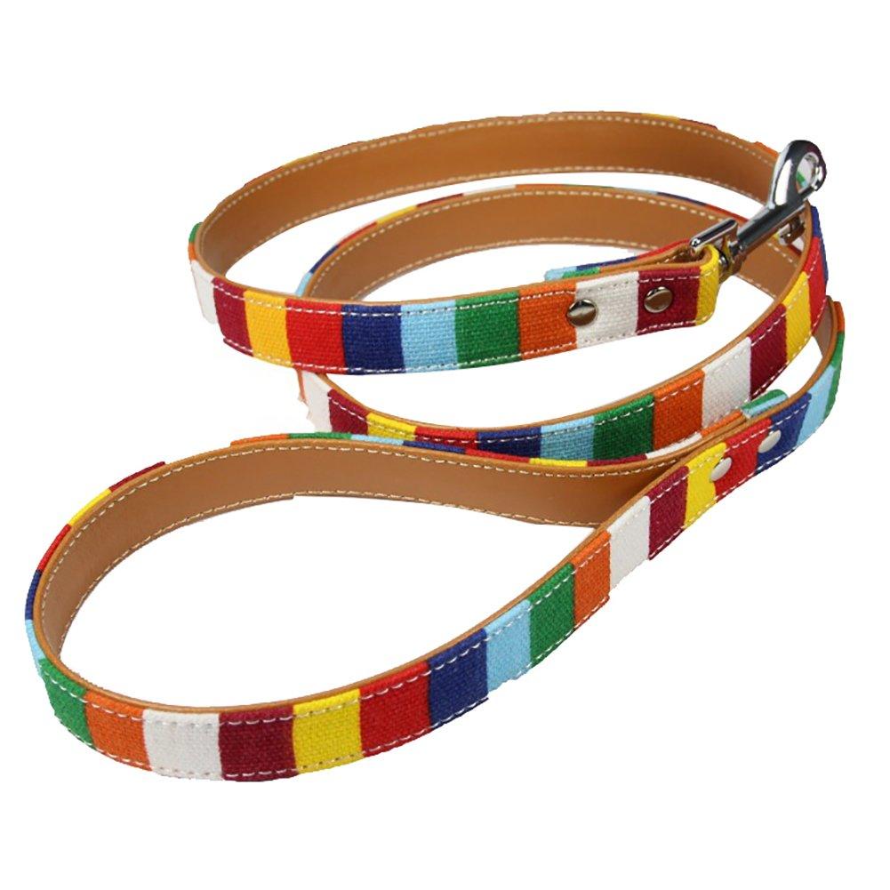 CricTeQleap Let's Go. coloré Chien Marche d'entraînement de sécurité Laisse Corde de Traction pour Animal Domestique Fournitures