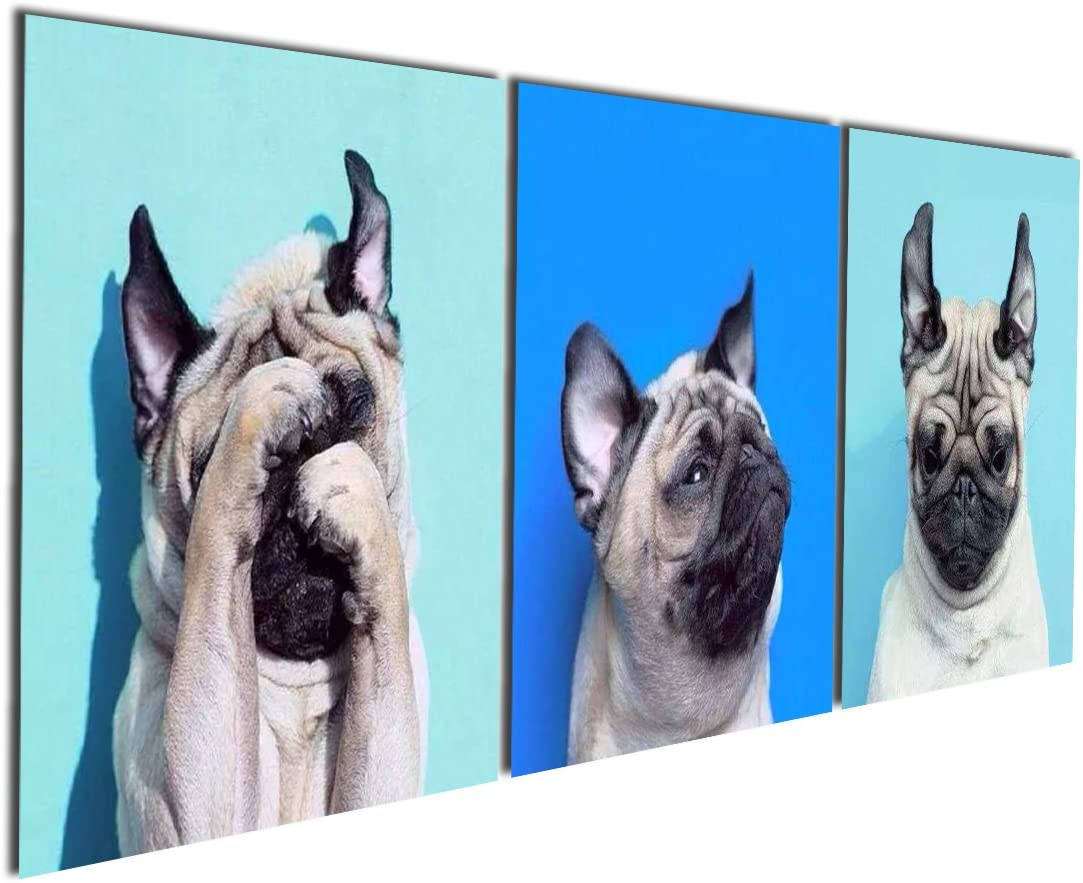 Gardenia Art – Animal World Series 13 Pug Puppy Modern Canvas Wall Art Paintings Puppy Blue Artwork for Bedroom Living Room Decoration,12×12 inch per Piece, 3 Pieces per Set, Stretched and Framed