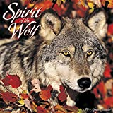 Few animals inspire as much myth and misunderstanding, fear and awe as the gray wolf. These twelve stunning, fullcolor photographs comprise a magnificent portrait of these enigmatic predators. The large format wall calendar features daily gri...