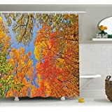 Leaves Decor Shower Curtain Set By Ambesonne, Falls Colors In National Country Park Nature Observation Base Perspective Photo, Bathroom Accessories, 69W X 70L Inches, Orange Blue Green