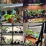 Plant Grow Light T5 Samsung&Full Spectrum 3500K