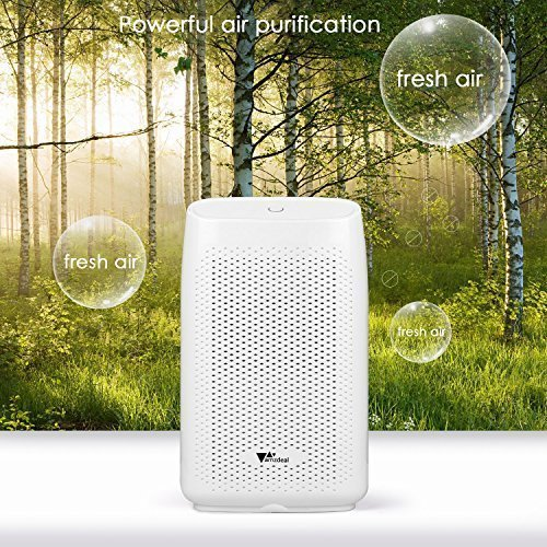 amzdeal Dehumidifier for Home Small Dehumidifier Mini Electrical Quiet 700ml (24fl.oz) Capacity Suitable for Bedroom Basement Bathroom(1200 Cubic Feet or 215 sq ft) Auto Off to Remove Damp, Moisture by amzdeal