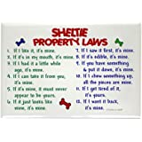 "CafePress - Sheltie Property Laws 2 Rectangle Magnet - Rectangle Magnet, 2""x3"" Refrigerator Magnet"