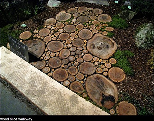 "Fuhaieec 5pcs 5.5""-7"" Unfinished Natural Wood Slices Circles with Tree Bark Log Discs for DIY Craft Woodburning Christmas Rustic Wedding Ornaments"