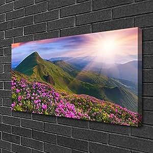 Lienzo Imprimir–Wall Art–impresiones sobre lienzo por tulup–100x 50imagen imagen tema: montañas de flores paisaje