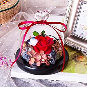 Eternal Rose- Preserved Flower Rose Handmade Fresh Flower Rose with Beautiful Creative Heart Design a Gift for Valentine's Day Mother's Day Christmas Anniversary Birthday Thanksgiving Girls(Red) 2