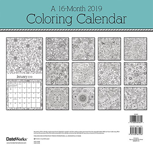 Amazon.com: 2019 Coloring Calendar Wall Calendar (9781438861296): Trends  International: Books