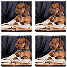 MSD Natural Rubber Square Coasters IMAGE ID: 10142599 puppy purebred dachshund