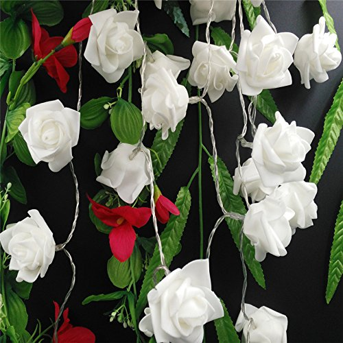 A2Z PVC Roses LED String and 1 Keychain (White) Specialty Lighting at amazon