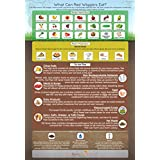 """""""What Can Red Wigglers Eat?"""" Infographic Refrigerator Magnet for Live Red Wiggler Worm Composting Bins - An Essential Accessory to Any Worm Farm Starter Kit - Perfect For Kids & Adults"""