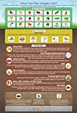 ''What Can Red Wigglers Eat?'' Infographic Refrigerator Magnet for Live Red Wiggler Worm Composting Bins - An Essential Accessory to Any Worm Farm Starter Kit - Perfect For Kids & Adults